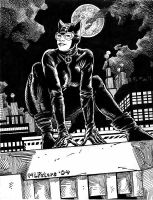 Cat Woman by mlpeters