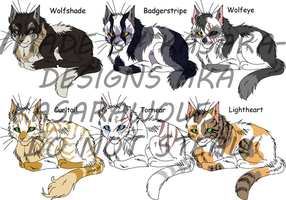 Warrior Cats- Elders 1 GONE by Kasara-Designs