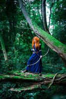 Deep in the forest - Brave by Lynah