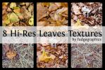 Hi-Res Leaves Textures by fudgegraphics