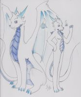 Nicko's forms by Dragon-Wish