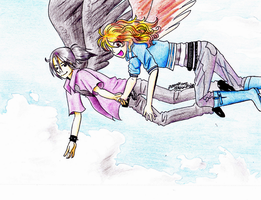 Along for the Maximum Ride by ashestoApples
