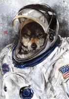 astronaut wolf by racoonwolf