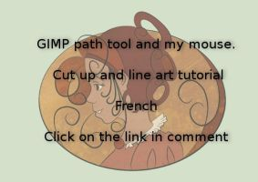 Gimp path tool by Mirving