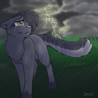 Greystripe's sorrow by Blinded-By-Stones