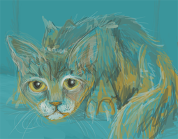 Kitten Speedpainting by ShaylJoran