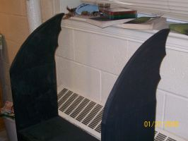 Batwing Bookcase 2 by Dragon-hobbit101