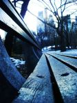 bench in central park by nababjadi