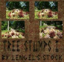 Tree Stumps Pack I by Lengels-Stock