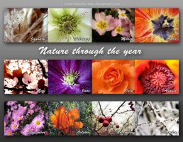 Nature through the year - calendar by ilura-menday-less