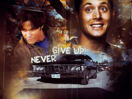 SPN - Never give up by DaaRia