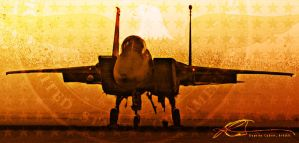 American Eagle f15 Figher Jet by ruv