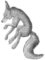 Kitty's Coloring Realistic_wolf_freebie_by_shaunwhatareyoudoing-d6cdx5z