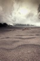 Whispering Sand by adityapudjo