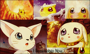 I rememeber now banner by MissPink95