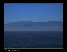 Puget Sound by blinchikis