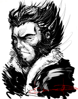 Wolverine by Chanrom