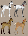 Papillon Foal auction 2 CLOSED by Meykka