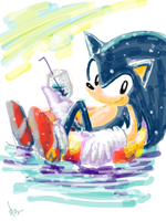 Sonic on the water by okaryu