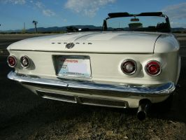 CorVairLicious Booty by RoadTripDog