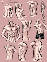 male anatomy practice by Carmalicious