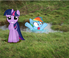 What Did you do Twilight? - 17 by FD-Daylight