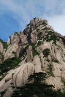 huangshan 1.5 by meihua-stock