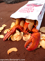 Lobster Chips by caycowa