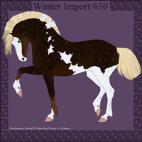 Winter Import 630 by ThatDenver