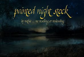 Painted Background Night 2 by nathies-stock