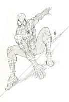 spidey by Patrick-Hennings