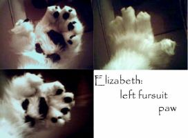 Elizabeth Fursuit paws by Sharpe19