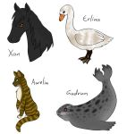 Animal Forms by PuddingValkyrie