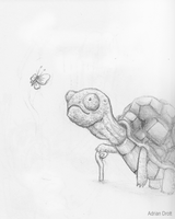 Elder Turtle - DailySketch22 by Adrian-Drott