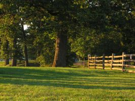 023.  Paoli Battlefield Park by mynti-stock