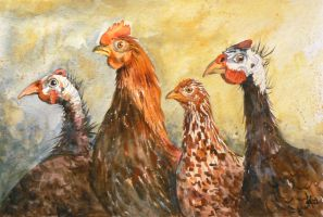 On the poultry market by mashami