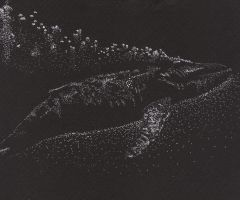 Whale by Pisces-in-Bloom
