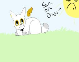 its a bunny and sun on drugs by comptonja