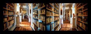 The Library of Anna-Amalia 5 by calimer00