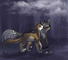 Let the Rain Fall by collie-rado