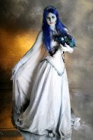 Corpse Bride by MeiTotoro