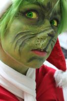 You're a mean one... Mr. Grinch ! by BDgirly