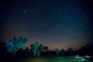 Country Stars by FireflyPhotosAust