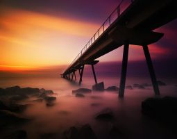 Pont del Petroli III by intels