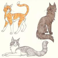 Three RiverClan Cats by CaptainMorwen