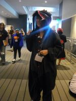 Nekocon pictures 108 by dogo987