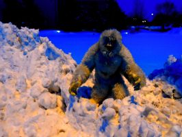 The Abominable Snowman by Jamesbaack