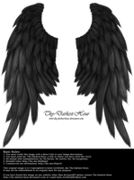 Daydream Wings - Black by Thy-Darkest-Hour