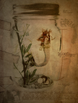 The Mermaid Jar by goshdarnart