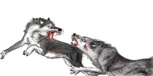 Dog vs Wolf by Valizzl